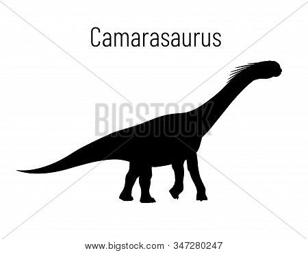 Camarasaurus. Sauropodomorpha Dinosaur. Monochrome Vector Illustration Of Silhouette Of Prehistoric