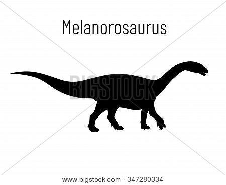 Melanorosaurus. Sauropodomorpha Dinosaur. Monochrome Vector Illustration Of Silhouette Of Prehistori