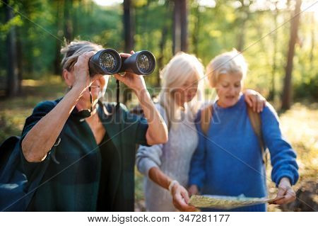Senior Women Friends Outdoors In Forest, Using Map And Binoculars.