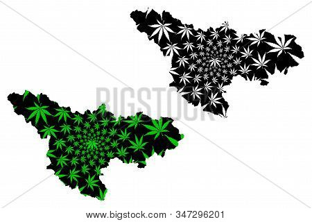 Timis County (administrative Divisions Of Romania, Vest Development Region) Map Is Designed Cannabis