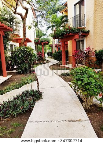 Colorful Tropical Caribbean Street, With Trees At The Entrance. Playa Del Carmen, Mexico