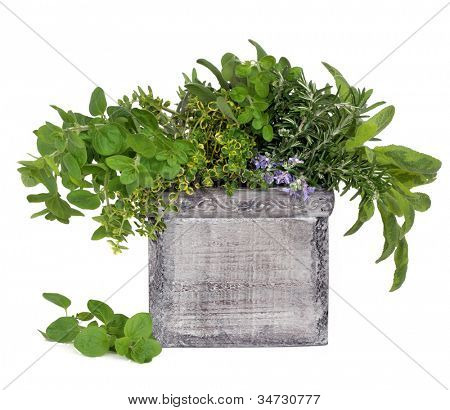 Herb leaf and flower selection of rosemary, thyme, sage, oregano in a distressed decorative wooden box over white background.