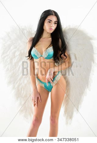 Girl Wear Lingerie Angel Feather Wings Accessory. Femininity And Sensuality. Erotic Angel. Desirable