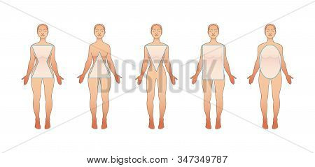 Types Of Female Bodies. Hourglass, Triangle, Inverted Triangle, Round, Rectangle. The Physique Of Wo