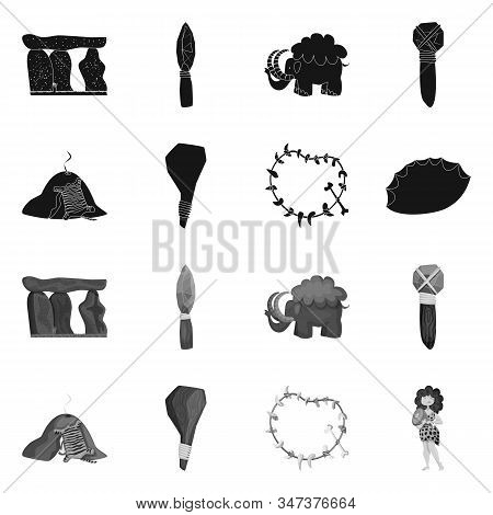 Vector Illustration Of Evolution And Prehistory Icon. Set Of Evolution And Development Vector Icon F
