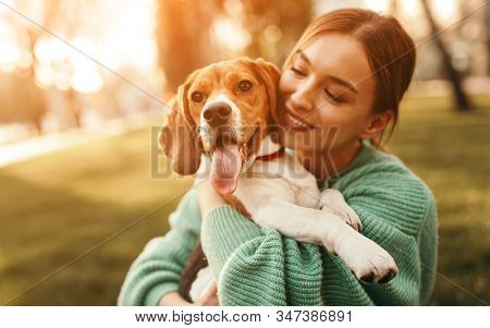 Positive Young Female In Green Sweater Hugging Friendly Beagle Dog Enjoying Happy Moments Together W