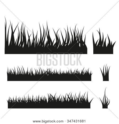 Vector Set Of Black Grass Silhouettes Isolated On White Background.