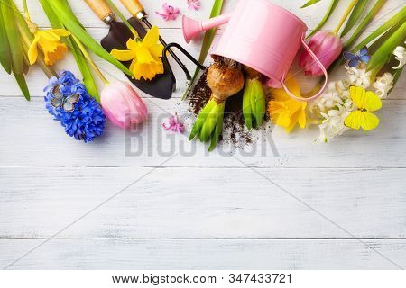 White Table With Gardening Tools, Seedling Of Flowers And Butterflies Top View. Beautiful Nature Spr