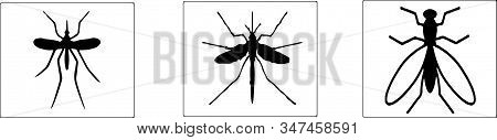 Mosquito Icon Isolated On Background Safety, Security, Skin, Sting