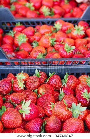 Strawberry In Market