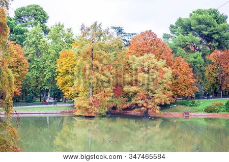Beautiful Pond And Colorful Autumn Trees In The Buen Retiro Park Near The Crystal Palace. Madrid, Sp