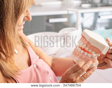 Mould Of Human Teeth. Oral Health Concept. Mould Of Human Teeth. Close Up Dental Gypsum Model. Plast