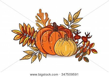 Autumn Leaves And Pumpkins Isolated On White Background. Seasonal Rowan And Oak Leaves With Gourds A