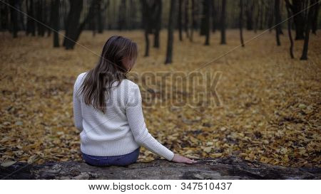 Sad Woman Sitting In Autumn Park Remembering Deceased Husband, Loss Of Loved One
