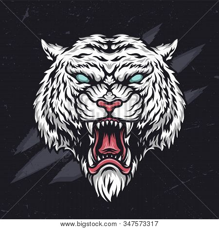 Ferocious Angry Cruel Tiger Head In Vintage Style On Dark Background Isolated Vector Illustration