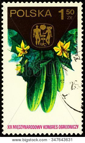 Moscow, Russia - January 27, 2020: Stamp Printed In Poland Shows Cucumbers (cucumis Sativus), Circa