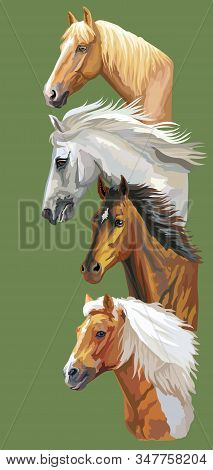 Vertical Postcard With Running Horses. Colorful Vector Realistic Portraits Of Horses In Profile. Gro