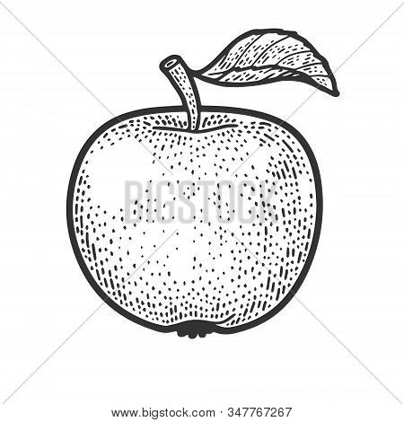 Apple Fruit Sketch Engraving Vector Illustration. T-shirt Apparel Print Design. Scratch Board Imitat
