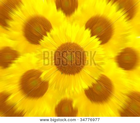 Sunflower More Motion Zoom Blur Background