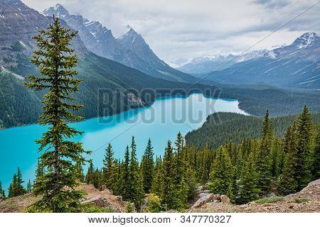 Beautiful Turquoise Color Peyto Lake Alberta Canada