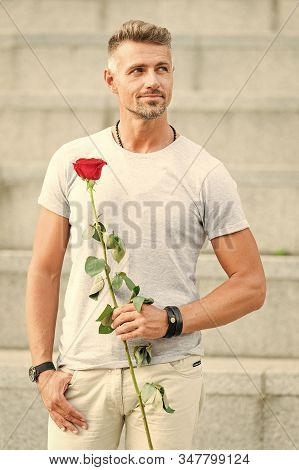 In Fact He Is Dating. Handsome Man Dating. Caucasian Guy Holding Red Rose Gift For Dating Anniversar