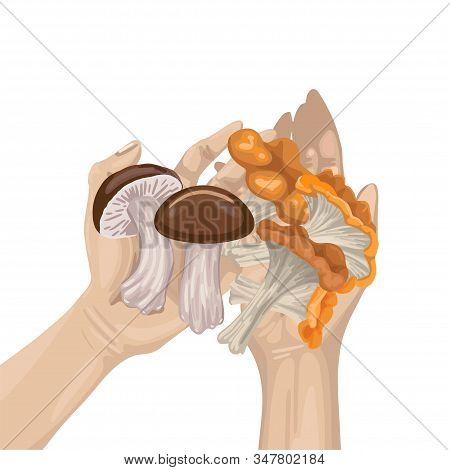 Mushroom And Branch With Leaves In Arms. Harvest. Vector Flat Illustration