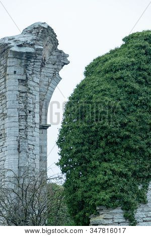 Church Ruins In Visby, Gotland In Sweden.