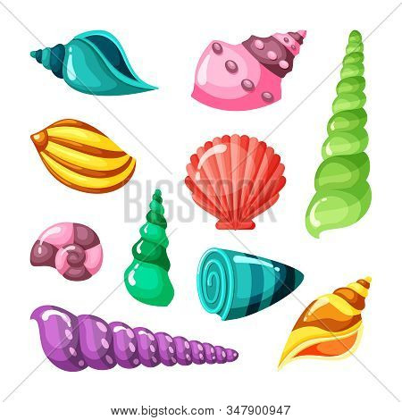 Seashell Marine. Summer Sea Or Ocean Objects Underwater Life Conch Shell. Vector Cartoon Collection
