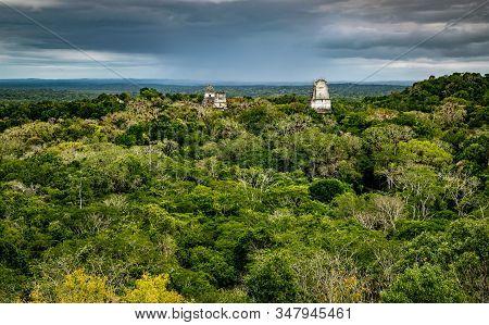 Dense Jungle Surrounding Tikal Archeological Site With The Storm Cloud On The Horizon. Peten, Guatem