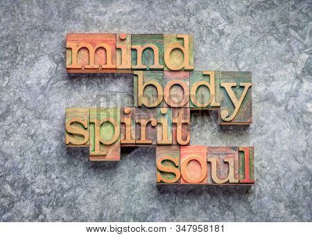body, mind, spirit and soul - word abstract in vintage wood letterpress printing blocks against textured bark paper, holistic wellness and lifestyle concept