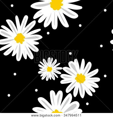Cute Seamless Pattern Of White Daisies Flower In Doodle Style And Tiny Circle On Black Background. V