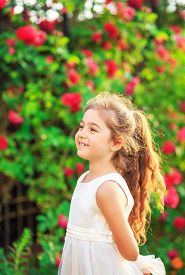 Beautiful Little Girl With Roses In Sunny Summer Park. Happy Cute Kid Having Fun Outdoors At Sunset.