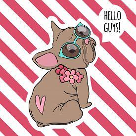 Bulldog Portrait. Cool Retro Pop Art Placard Baby Animal Funny Puppy Pet Vector Hand Drawn Style. Bu