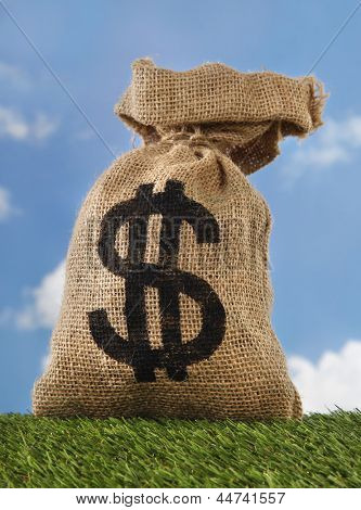 Burlap sack with dollar sign money bag on field