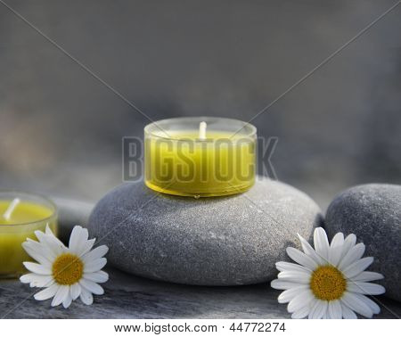 Two flower with candle, stone on driftwood