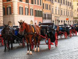 Rome Attraction