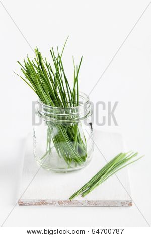 Fresh Chives In Jar