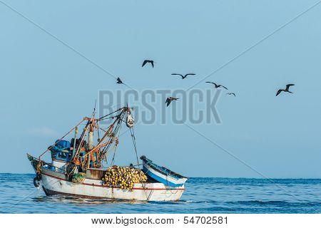 flock of birds and fishing boat in the peruvian coast at Piura Peru poster