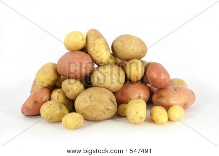 Pile Of Potatoes (6)