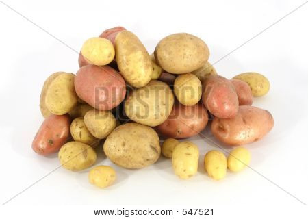 Pile Of Potatoes (3)