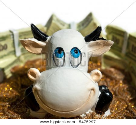 Cow Face Smiling Close Up