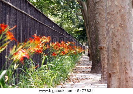 Flowers, Trees And A Fence All In A Repetitive Pattern