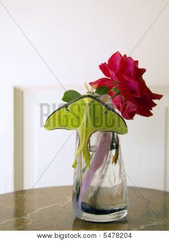 Luna Moth And Rose