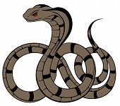 Vector Snake, Cobra in the form of a tattoo poster