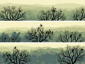Set horizontal banners of green forest with nest in tree and birds (green tone). poster