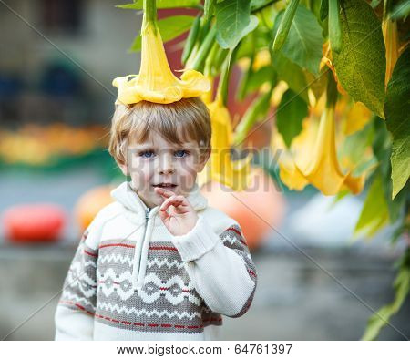 Little Boy With Big Yellow Flower
