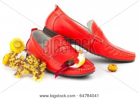 Pair Of Red Male Shoes
