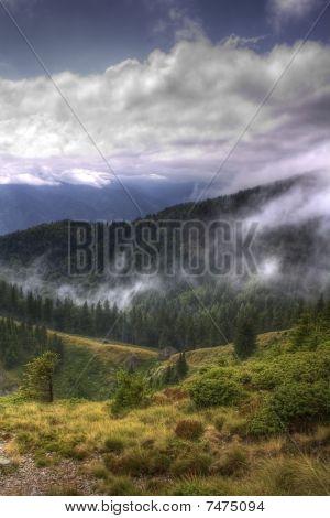 Landscape after a rain