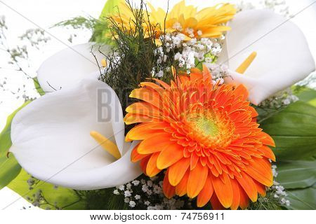 Bright bouquet. Calla and Gerbera flowers.