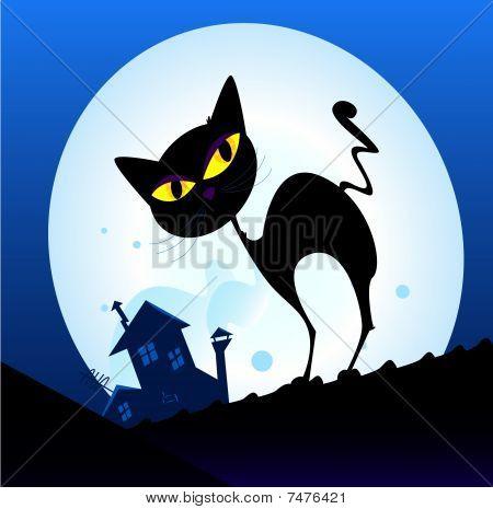 Black cat silhouette in night town